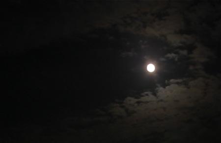 moon-daitokuji